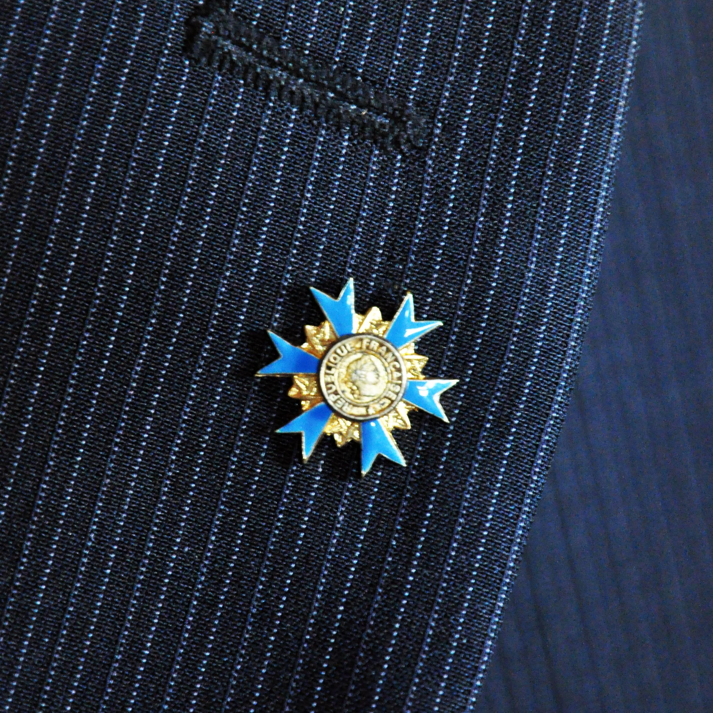 PINS ORDRE NATIONAL DU MERITE Officier