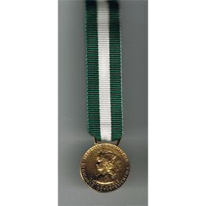 HONNEUR REGIONAL DEPT COMMUNALE 30 ans - reduction miniature