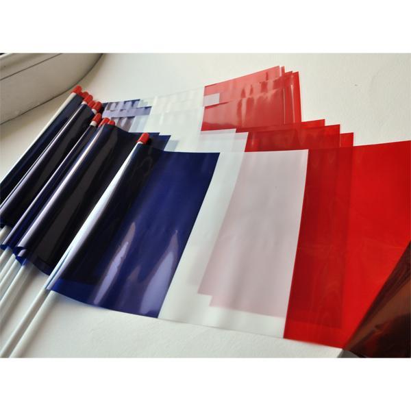 DRAPEAU FRANCE PLASTIQUE 20x30cm lot de 10 ex