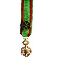 ORDRE DU MERITE AGRICOLE officier - reduction VERMEIL