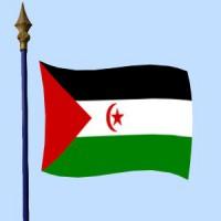 DRAPEAU Sahara occidental