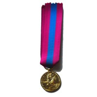 DEFENSE NATIONALE bronze - reduction miniature
