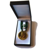 MEDAILLE COMMUNALE 35 ANS OR bronze dore