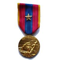 MEDAILLE D OR SANS CROIX DE LA DEFENSE NATIONALE étoile OR