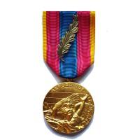 MEDAILLE D OR SANS CROIX DE LA DEFENSE NATIONALE palme bronze