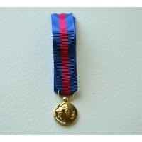 Médaille SERVICES MILITAIRES VOLONTAIRES bronze miniature