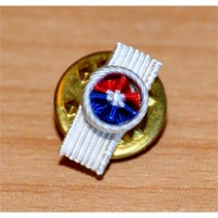 INSIGNE MEDAILLE SECURITE INTERIEURE OR ROSETTE
