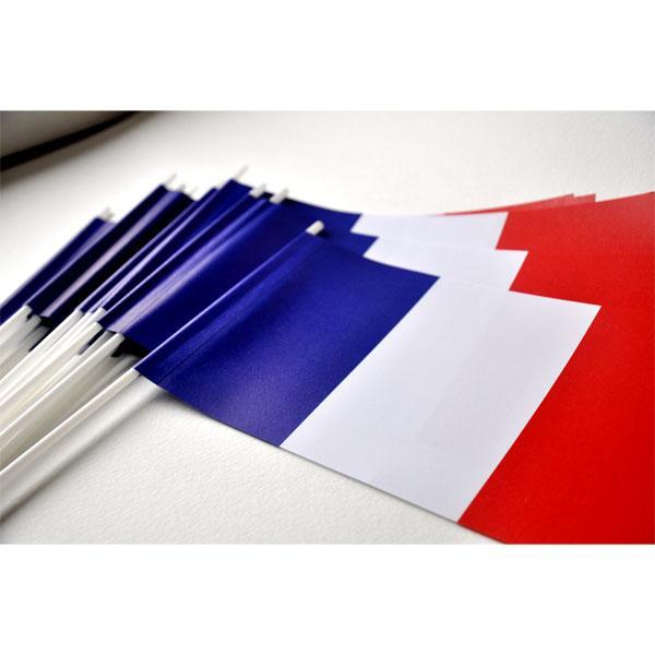 DRAPEAU FRANCE PAPIER 12X24cm - lot de 25 ex