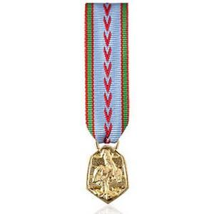 COMMEMORATIVE 39-45 Reduction miniature