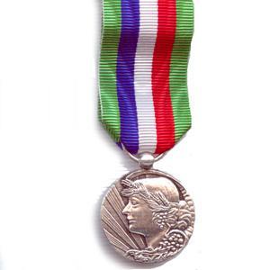 ANCIENNETE AGRICOLE 20 ANS bronze argente