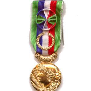 ANCIENNETE AGRICOLE 40 ANS qualité bronze doré