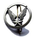Insignes Armée de l'Air